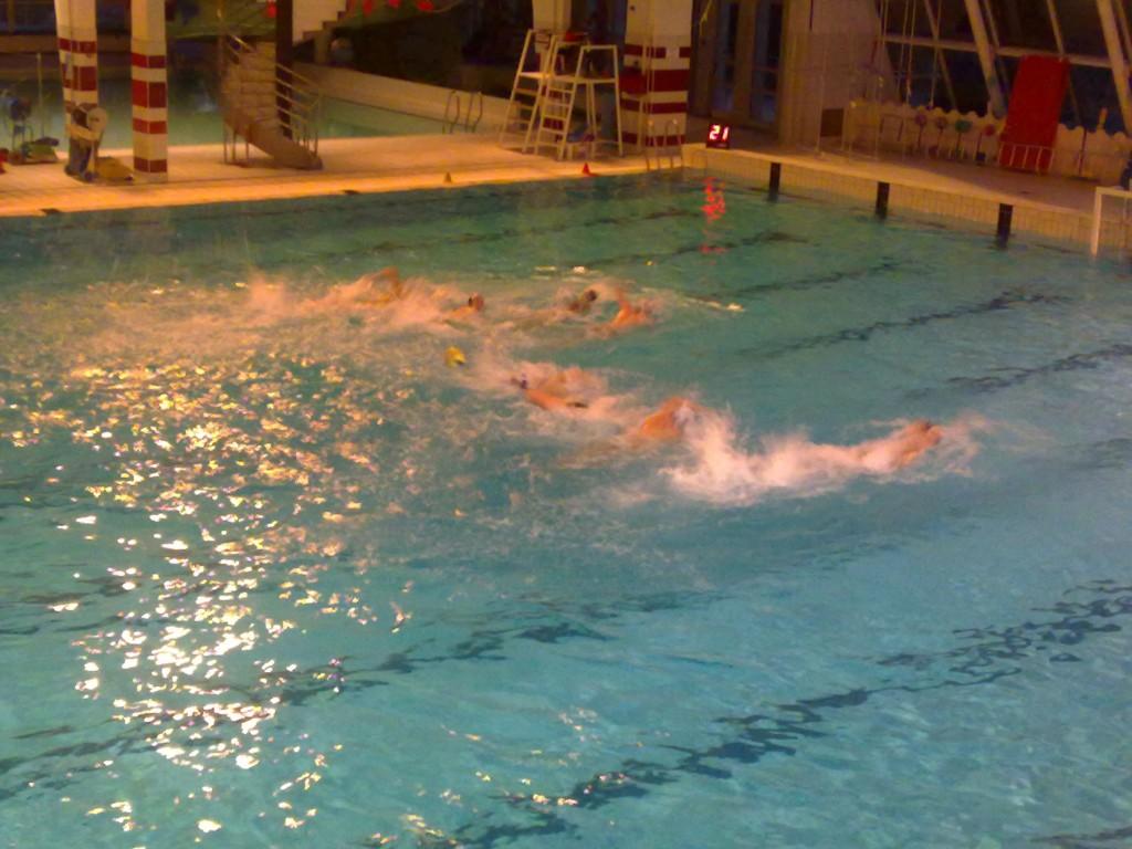 Seynod natation philippe chamosset for Piscine seynod