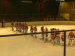 hockey sur glace,roller in line,rink hockey,seynod,annecy,camusso,djelloul,scavini,jean regis