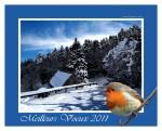 montagne-voeux-2011.jpg
